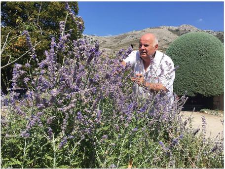 Christian Colotte Alchimist von SALIN de Biosel prüft die Qualität der Pflanze