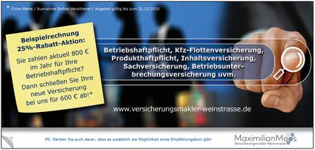 Bild Seite 2 Flyer Privatversicherungen Maximilian Moos, Versicherungsmakler Neustadt an der Weinstraße