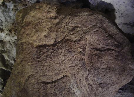 Gravure, Abri Labattut, Sergeac, Site de Castel-Merle