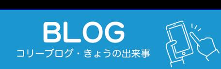 ラフコリー ブログ