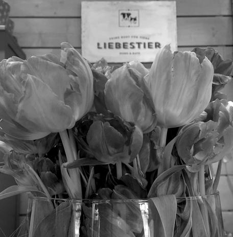 Liebestier Blumen in der Hütte
