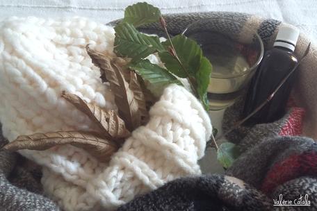 Gemmothérapie macérat glycériné bourgeons de charme soin naturel rhume