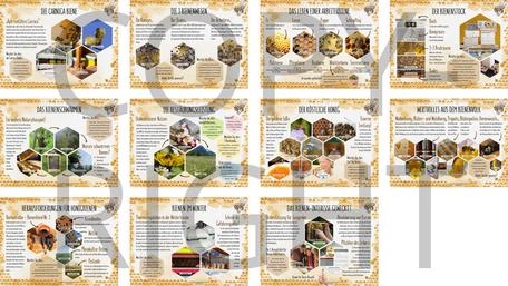 Regionsunabhängiger Bienenlehrpfad mit individueller Eingangstafel