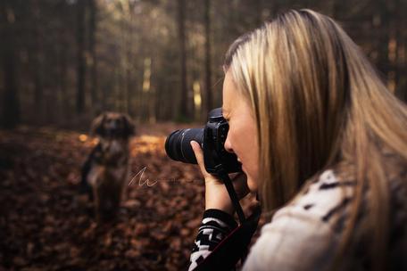 Kerstin Steiner Lichtertanz Fotografie Hundefotografie Gleisdorf Kontakt Fotoshooting Outdoor Fotografie Wald Shooting