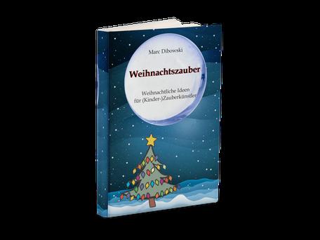 Zaubern zu Weihnachten Buch Dibowski