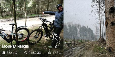 Dina weiß wo es lang geht. Raus aus dem Schneegestöber, rein in den Wald. (Foto: O. M. Kaptein)