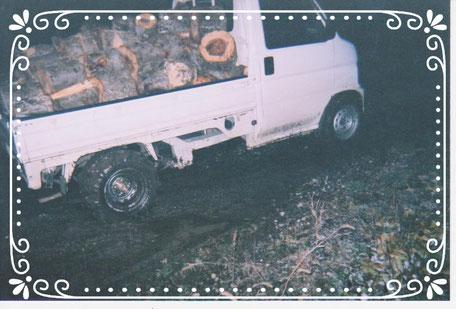 青森県のリンゴ園、古木を伐採、搬出作業