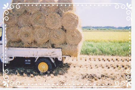 20Haの稲ワラ(ロールベラー)を2台の軽トラで搬出、堆肥散布にも使う。