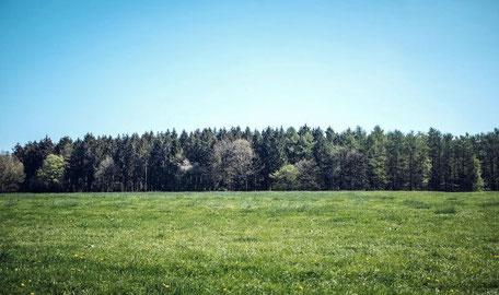 Grund Grundstück Grundstücke