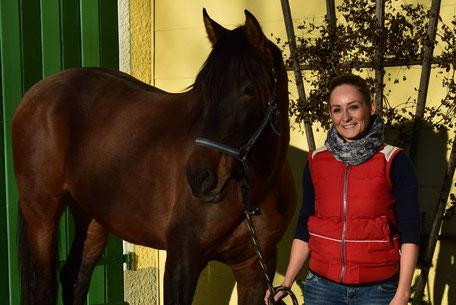 Pferdeosteopathie Dr. Sabine Wind