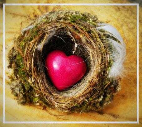 Herz im Nest: Sehnsucht erfüllen