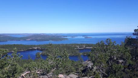 Blick aus dem Skulleskogen Nationalpark in Nordschweden