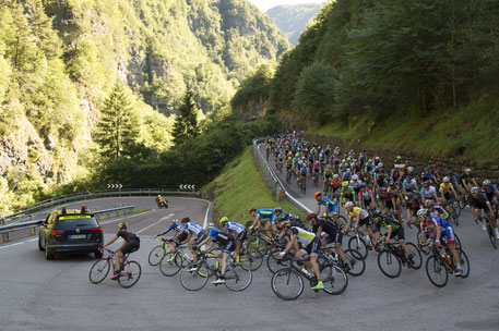 Der riesige TOUR Transalp-Tross /Foto: Uwe Geissler