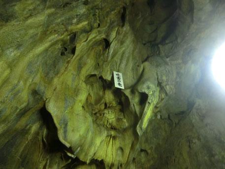 体感温度13度の世界。日本で最古の鍾乳洞と言われています。