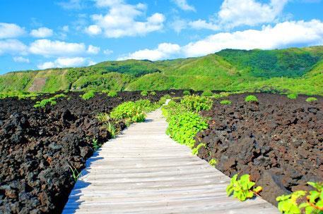 三宅サンマルツァーノ 火山体験遊歩道