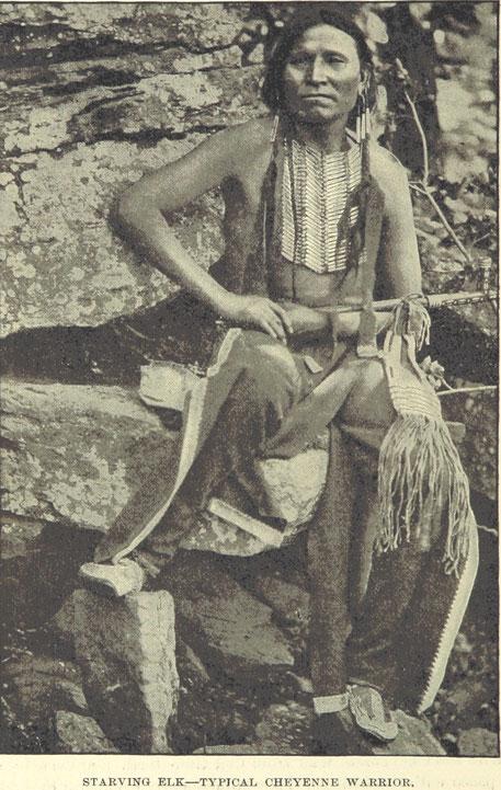 Symbolbild Blogartikel Indianer: Typischer Cheyenne Krieger