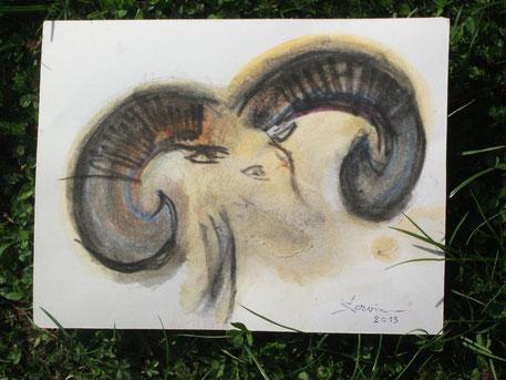 Etude tête de mouflon