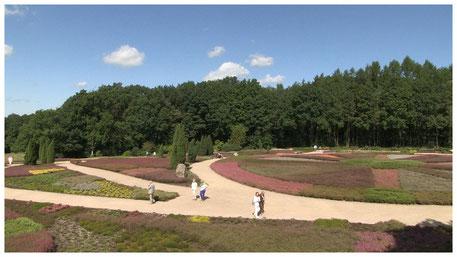Schneverdingen Heidegarten Wanderwege