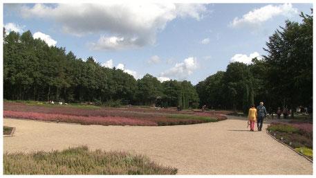 Schneverdingen Heidegarten Ruhe und Besinnlichkeit