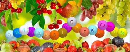 Obst-als-Quelle-der-Vitalstoffe