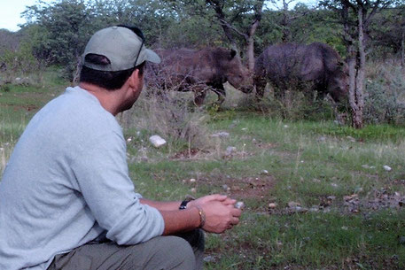Big 5 Tiere Afrika Safari  - Nashorn
