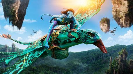 Apprivoiser son dragon en se connectant à son Esprit