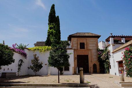 Photographie, Espagne, Andalousie, Cordoue, judería, rue, place, cyprès, maison, blanc, vert, couleurs, fleurs, Mathieu Guillochon
