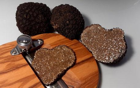 Trüffelkochbuch - Trüffelküche - Ihre Trüffelrezepte können Sie gerne bei uns veröffentlichen.