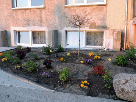 Nicht grau in grau und zugemüllt, wie es in den Medien oft gezeigt wird. Hier in Weferlingen sieht es einladend aus. Kleine Vorgärten mit Blumen und Sträuchern wurden angelegt und die Unterkunftsbewohner kümmern sich gern darum.