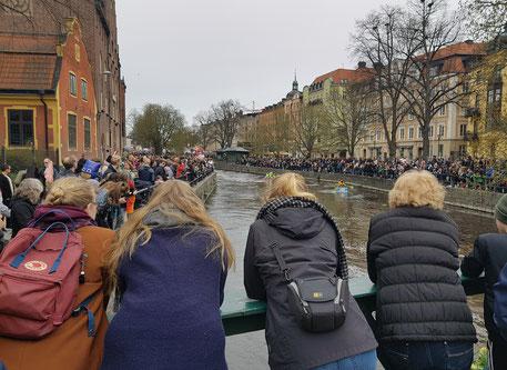 Viele Zuschauer beobachten das Floßrennen auf dem Fluss in Uppsala
