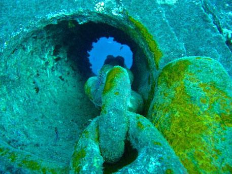 Meine Tauchgänge in Ägypten  Wrack Tauchgang zur S.S. Thistlegorm Tauchgänge in Dahab zum Blue Hole und zum Eel Garden