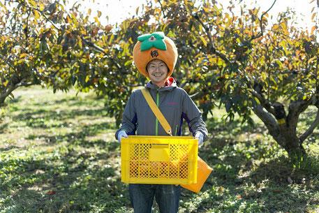 柿農家の紹介