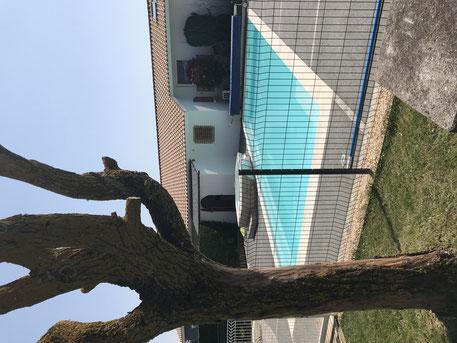 La piscine chauffée de 8 m de longueur par 4 m de largeur et de 1.30 m de profondeur. Son accès est clos avec une barrière sécurisée.