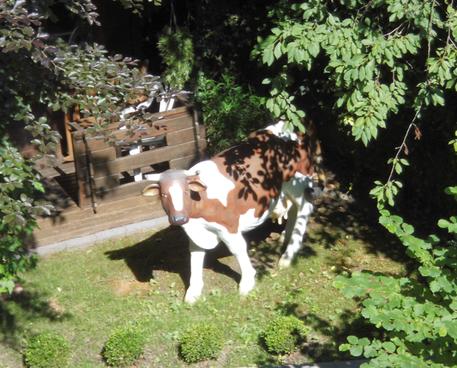Garten nebenan