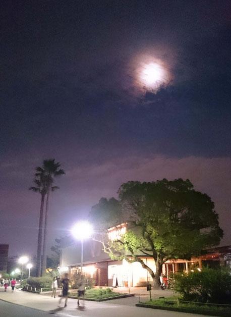 スーパームーンのおぼろ月夜 in 大濠公園