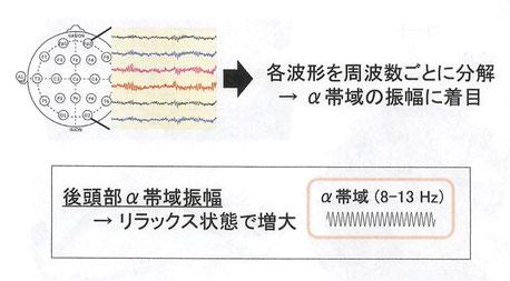 脳波について「九州大学農学研究院 農学博士 清水邦義」