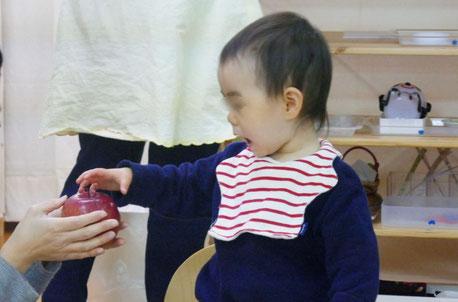 モンテッソーリの個別活動で、1歳児が実物と名称の一致を確認する言語活動にお母さまといっしょに取り組んでいます。1歳児が