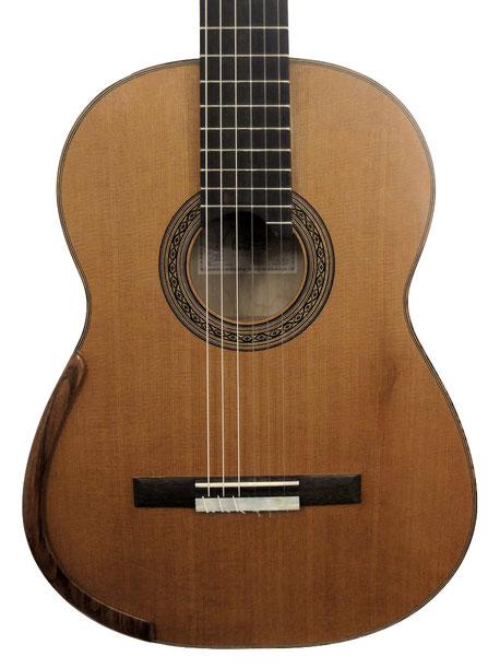 Jean-Marie Fouilleul 2016 Guitare C9-12
