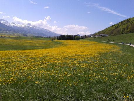 Le vercors en gite au printemps