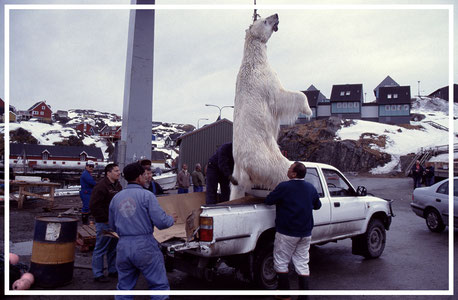Grönland_Reisefotograf_Abenteurer_Jürgen_Sedlmayr_16