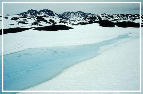 Alaska_1_Reisefotograf_Abenteurer_Jürgen_Sedlmayr_25