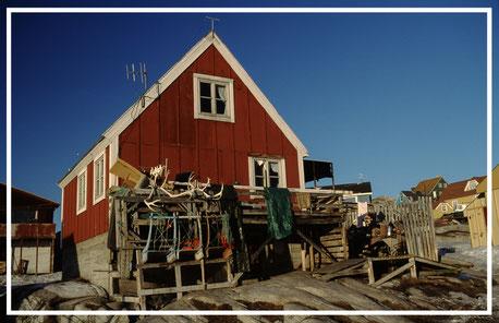 Grönland_Reisefotograf_Abenteurer_Jürgen_Sedlmayr_20
