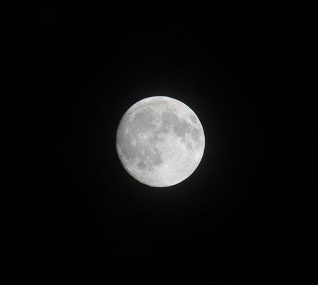 なんとか、お月様が見られました