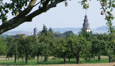Die Natur rund um Rodheim und Rosbach liegt uns am Herzen (Photo H. Kowoll)
