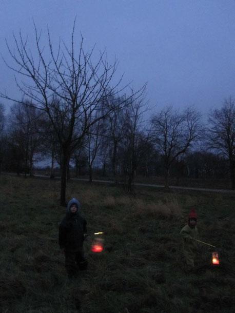 Kurz vor Einbruch der Dunkelheit waren wir noch am Kirschbaum, Barbarazweige schneiden...