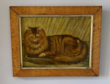 19th century folk art  naive school.  Portrait of a cat