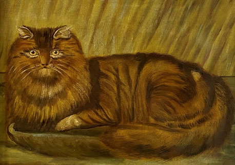 E19th century folk art  naive school.  Portrait of a cat