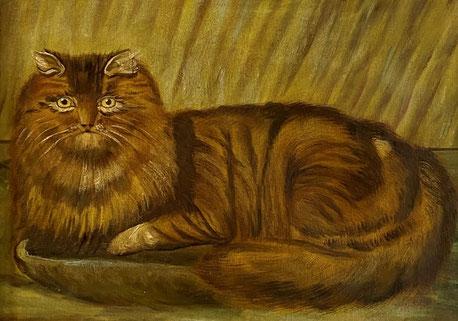E19th century folk art  naive school.  Portrait of a cat