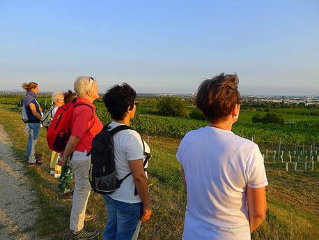Achtsamkeitsspaziergang in Wien Floridsdorf - der etwas andere Betriebsausflug