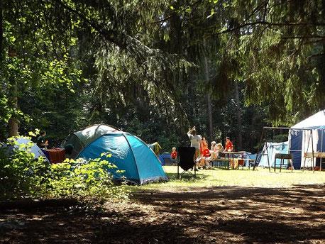Bunte Zelte im Wald auf einem Natur-Campingplatz in Deutschland. Gut, wenn eine Camping-Versicherung der ERGO abgeschlossen wurde.